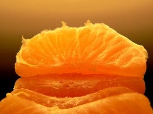 Corso di Aromaterapia: l'olio essenziale di Mandarino