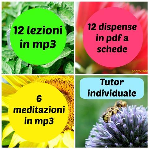 Corso Online di Aromaterapia e Psicoaromaterapia