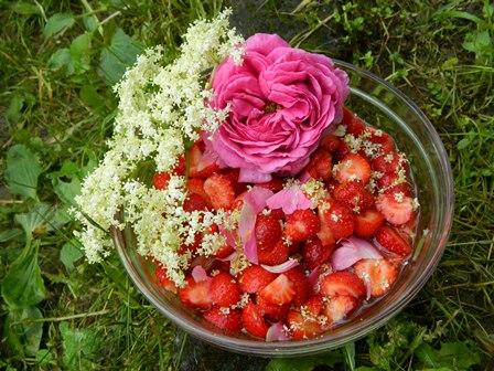 Fragole e fiori