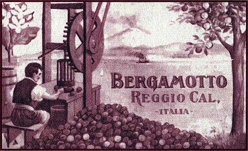 Arancio dolce e Bergamotto in Aromaterapia