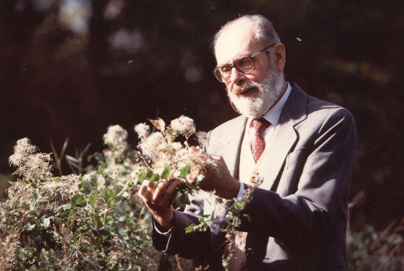 Aldo Poletti Aromaterapia