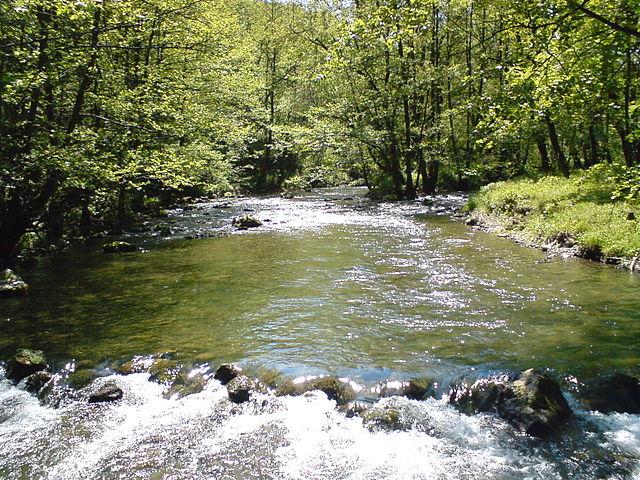 rock water rigidità aromaterapia