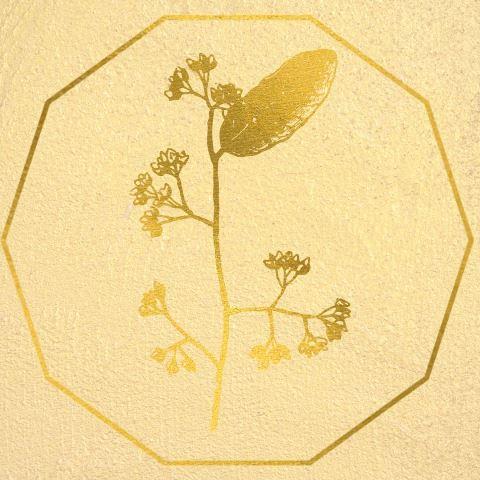 oligoelements naturopathy